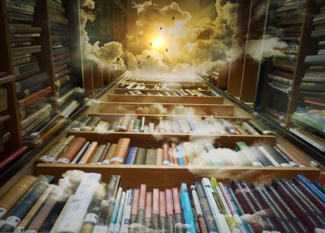 https://pixabay.com/de/bibliothek-himmel-v%C3%B6gel-mystisch-425730/