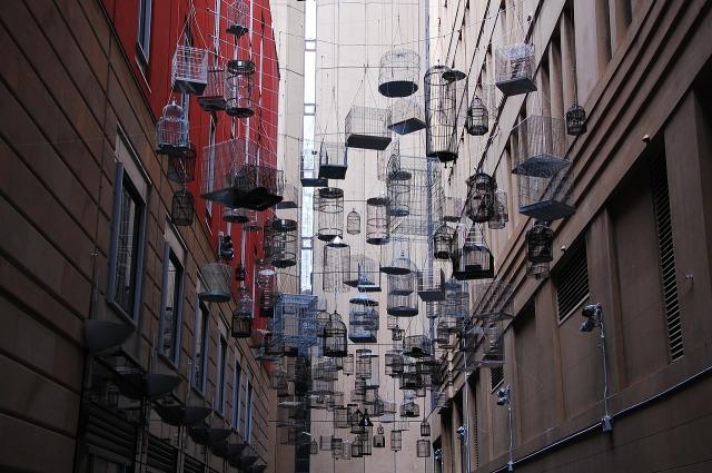 https://pixabay.com/de/sydney-vogelbauer-installation-458071/