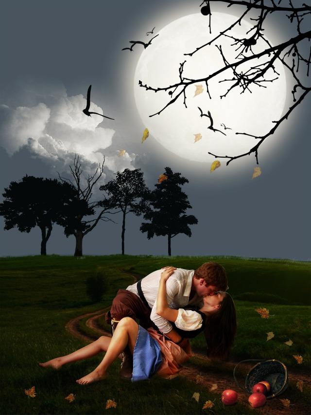 https://pixabay.com/de/paar-liebhaber-romantische-szene-564232/