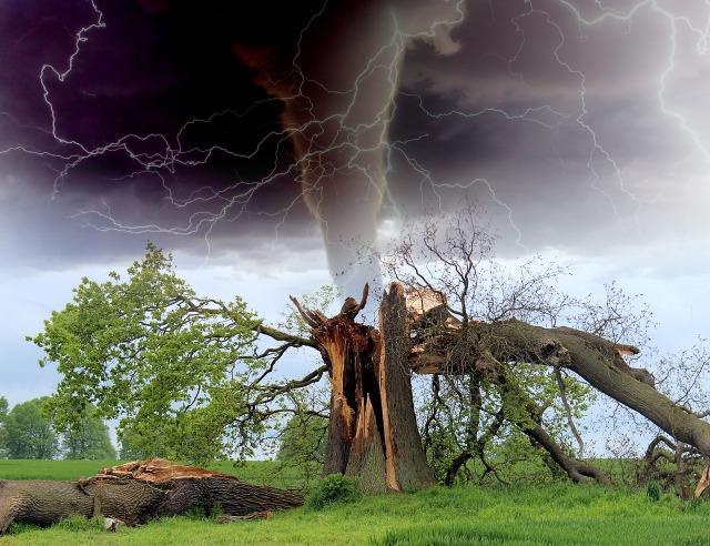 https://pixabay.com/de/tornado-sturm-ast-gewitter-1193184/