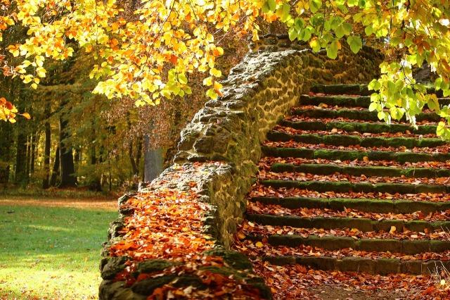 https://pixabay.com/de/treppe-steinstufen-herbst-stufen-1797623/