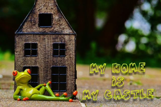 https://pixabay.com/de/frosch-zu-hause-my-home-is-my-castle-986104/