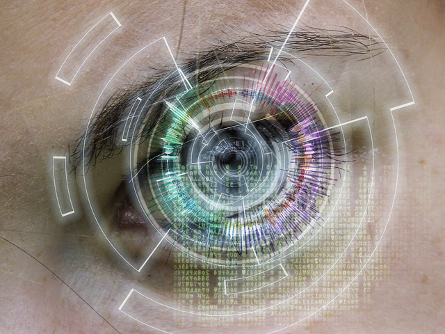 https://pixabay.com/de/auge-internet-zukunft-vision-669157/