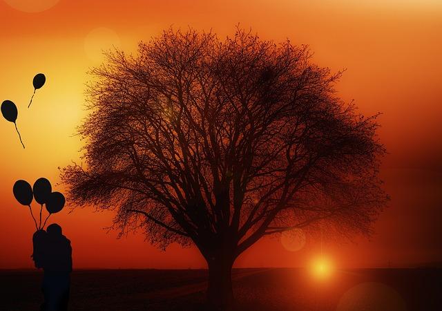 https://pixabay.com/de/baum-alleinstehend-sonnenuntergang-1894217/