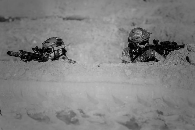 https://pixabay.com/de/krieg-w%C3%BCste-gewehre-gunshow-soldat-1446981/