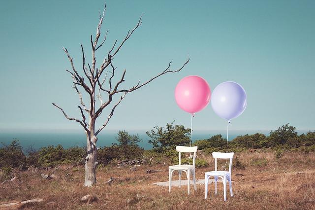 https://pixabay.com/de/st%C3%BChle-zwei-luftballons-baum-eine-1940973/