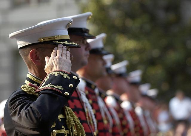 https://pixabay.com/de/soldaten-milit%C3%A4rische-aufmerksamkeit-559761/