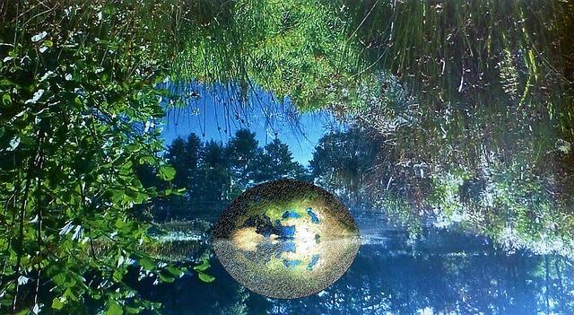 https://pixabay.com/de/natur-wald-see-maerchenwald-974819/