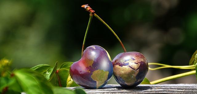 https://pixabay.com/de/kirschen-globus-welt-erde-erdkugel-2584697/