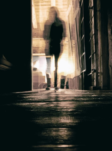 https://pixabay.com/de/geist-gruselig-halloween-gespenst-2304469/