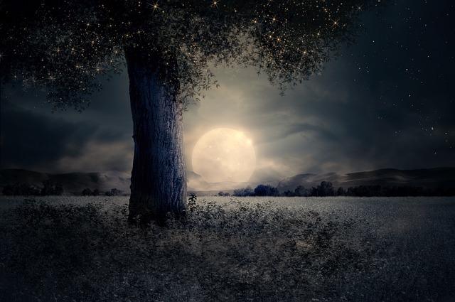 https://pixabay.com/de/nacht-landschaft-baum-m%C3%A4rchen-2539411/