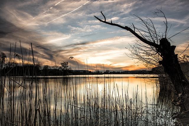 https://pixabay.com/de/see-landschaft-schweiz-natur-1412216/