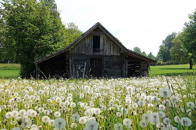 https://pixabay.com/de/schuppen-landschaft-bauernhof-1587802/