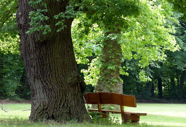 https://pixabay.com/de/egestorffpark-parkbank-sommer-b%C3%A4ume-1628870/
