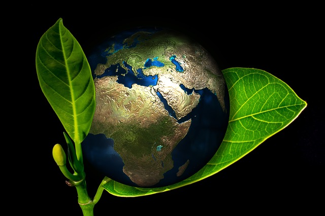 https://pixabay.com/de/erde-globus-geburt-neu-entstehen-405096/