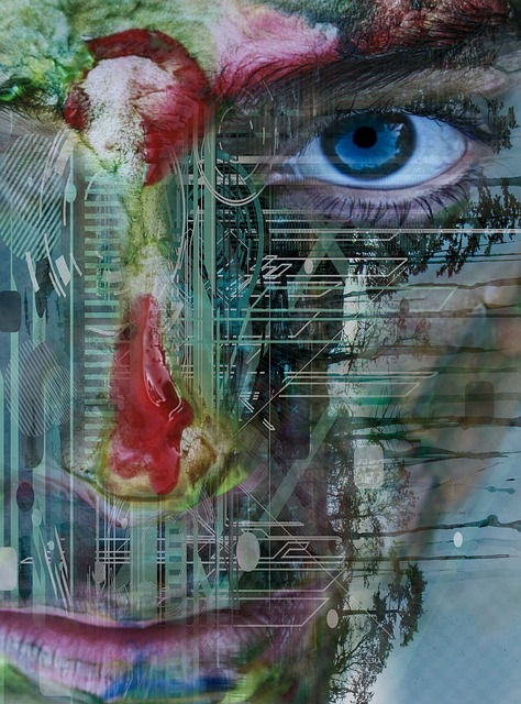 https://pixabay.com/de/verr%C3%BCckt-gesicht-ausdruck-portr%C3%A4t-2666411/