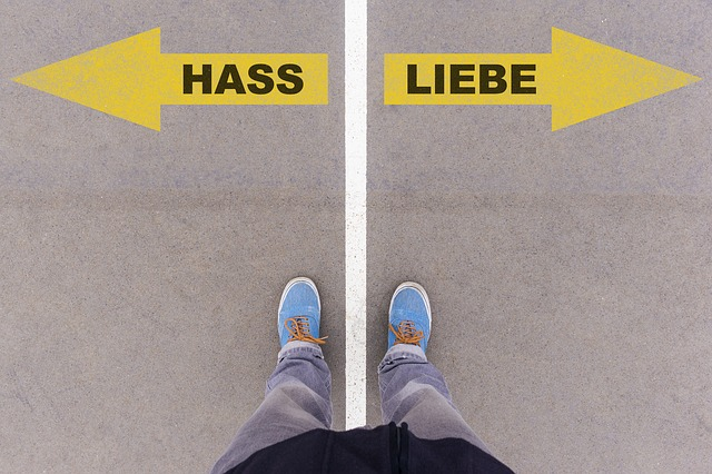 https://pixabay.com/de/liebe-hass-deutsch-text-sprache-2644155/