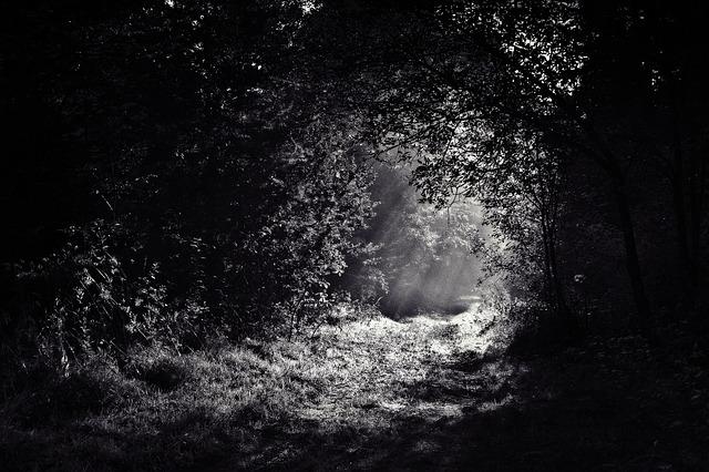 https://pixabay.com/de/wald-pfad-dunkel-nacht-licht-690415/