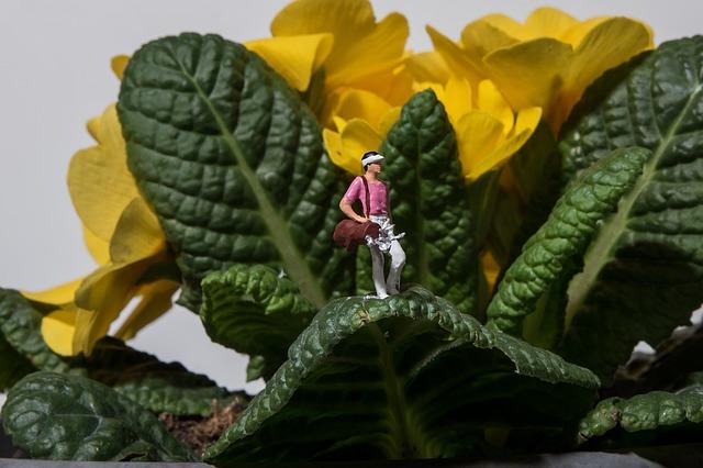 https://pixabay.com/de/miniatur-fotografie-golf-bl%C3%BCten-1310050/