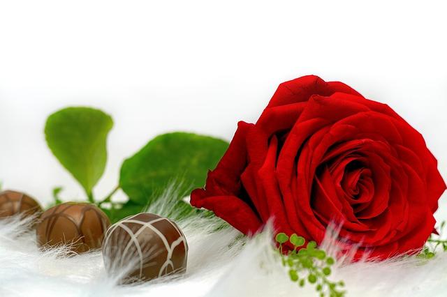 https://pixabay.com/de/rose-schokolade-liebe-naschen-3014267/