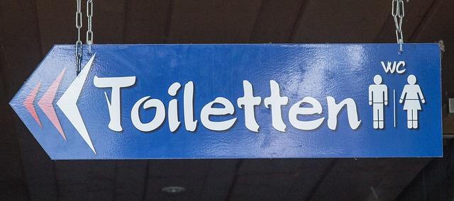 https://pixabay.com/de/toiletten-wc-klo-867932/