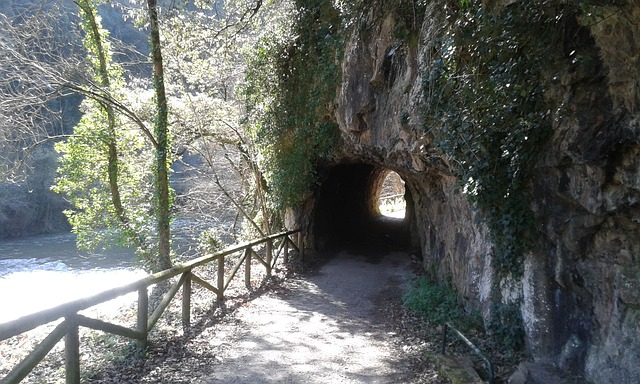 https://pixabay.com/de/wanderweg-weg-tunnel-natur-bewuchs-2073867/