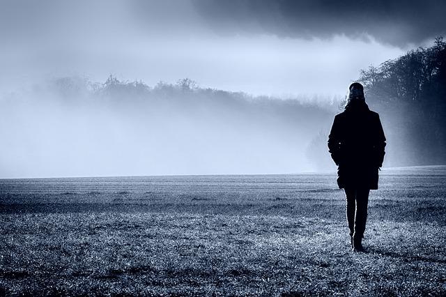 https://pixabay.com/de/nebel-morgend%C3%A4mmerung-landschaft-3914967/