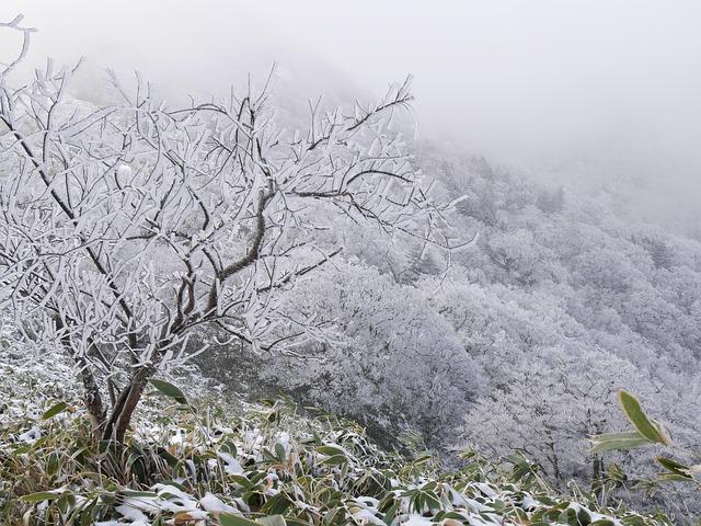 https://pixabay.com/de/winter-berg-raureif-winter-1976159/