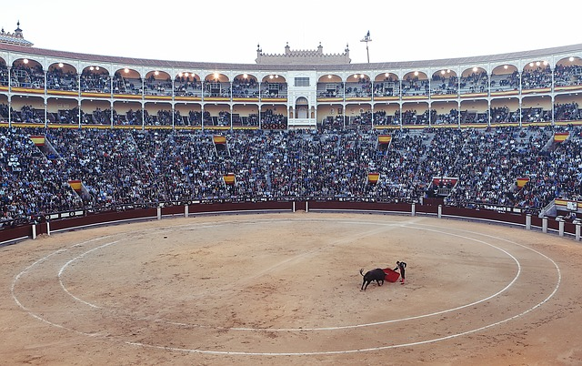 https://pixabay.com/photos/bullfight-torero-corrida-arena-406865/