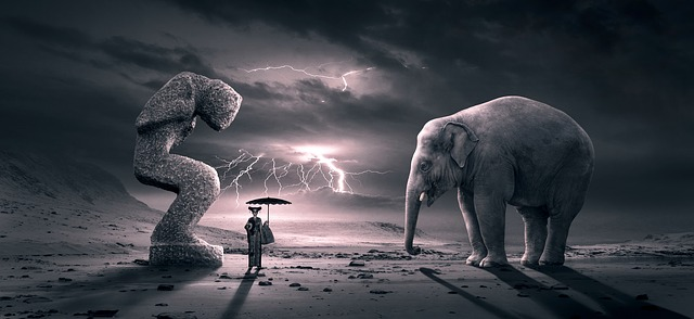 https://pixabay.com/photos/fantasy-surreal-scene-elephant-3988020/