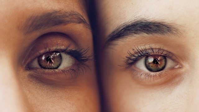 https://pixabay.com/photos/eyes-eyelashes-eyelid-eyebrows-2564517/