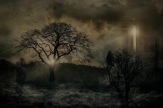 https://pixabay.com/photos/separation-pain-mystical-farewell-3209040/