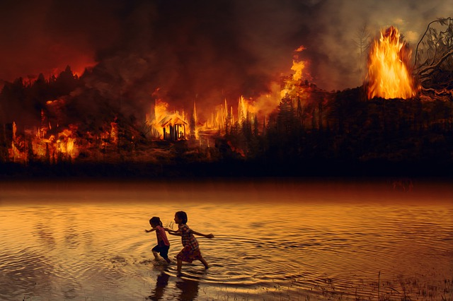 https://pixabay.com/photos/fire-forest-fire-children-fear-4429478/