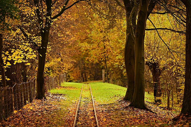 https://pixabay.com/photos/railroad-track-transport-travel-3963706/