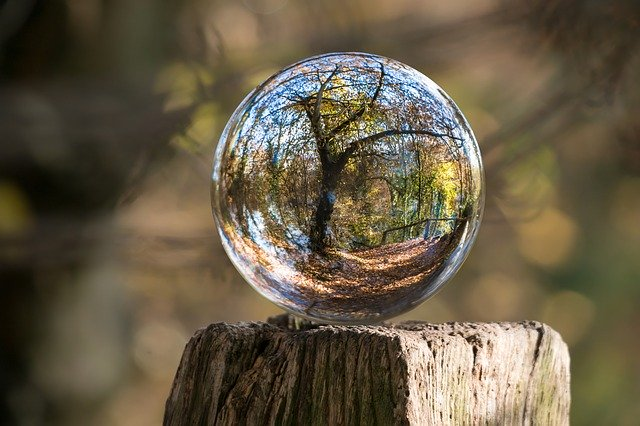https://pixabay.com/photos/glass-ball-autumn-tree-gnarled-1813707/