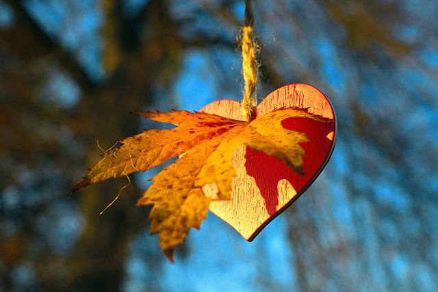 https://pixabay.com/photos/i-love-autumn-autumn-leaves-heart-4661606/