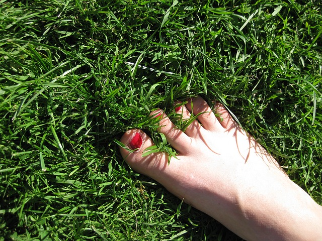 https://pixabay.com/photos/foot-meadow-grass-green-toe-5033/