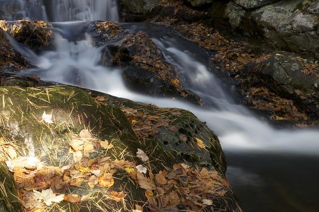 https://pixabay.com/de/photos/bachlauf-fluss-wasser-bewegung-768313/