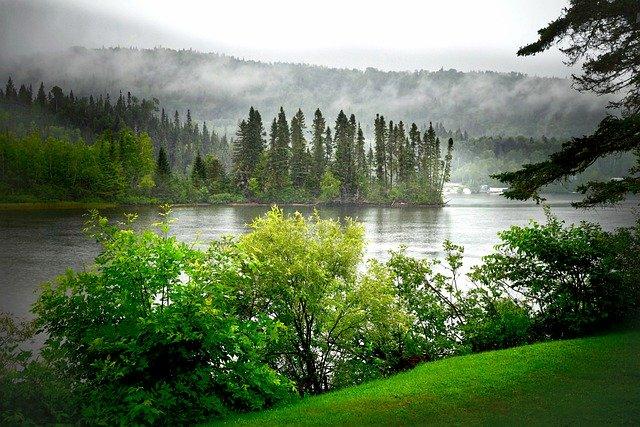 https://pixabay.com/de/photos/landschaft-sommer-natur-nebel-4984348/