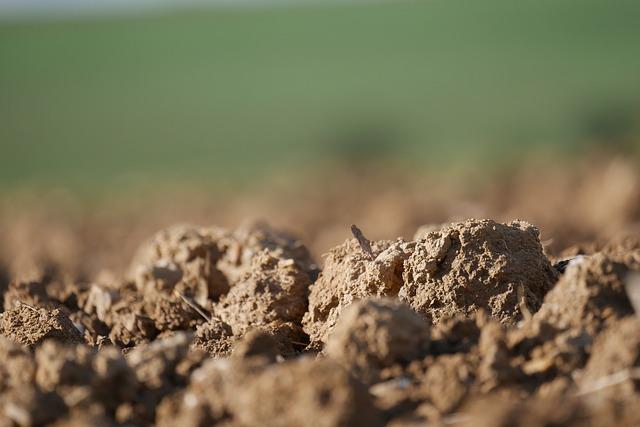 https://pixabay.com/de/photos/acker-erde-feld-landwirtschaft-4600451/