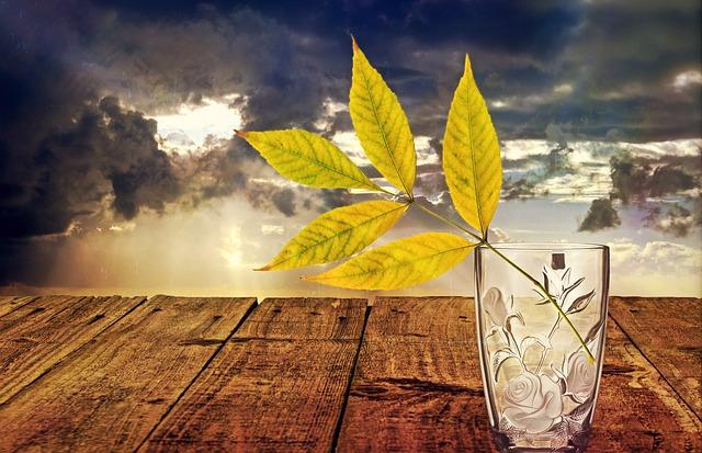 https://pixabay.com/de/photos/stillleben-glas-vase-dekoration-1139582/