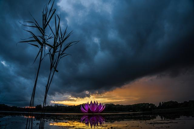 https://pixabay.com/de/photos/natur-landschaft-wolken-wald-4528852/