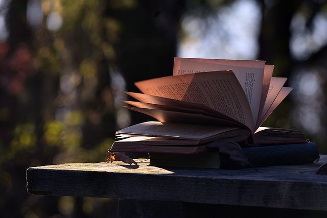https://pixabay.com/de/photos/buch-wissen-schule-wissenschaft-5726185/