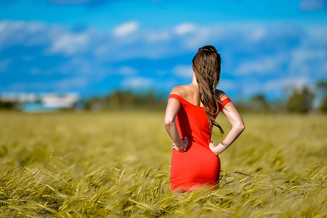 https://pixabay.com/de/photos/m%C3%A4dchen-rotes-kleid-abbildung-feld-4633162/