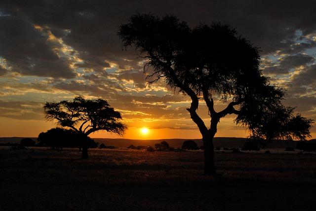 https://pixabay.com/de/photos/sonnenuntergang-orange-himmel-6048458/