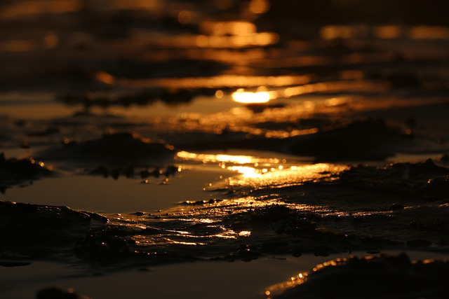 https://pixabay.com/de/photos/sonnenuntergang-schlamm-strand-5653998/