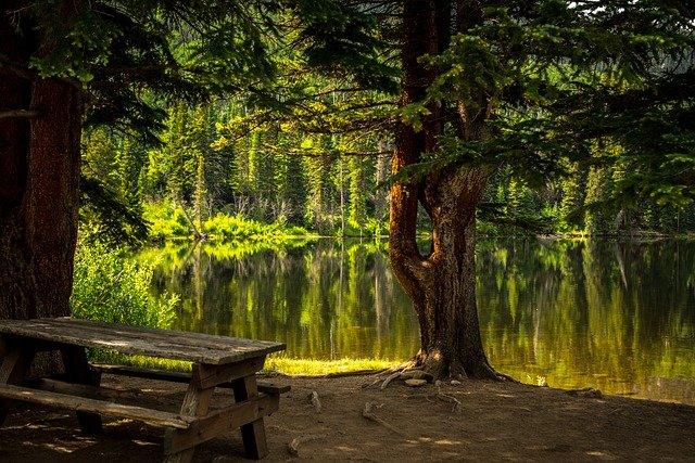 https://pixabay.com/de/photos/bank-see-park-erholungsgebiet-2178847/