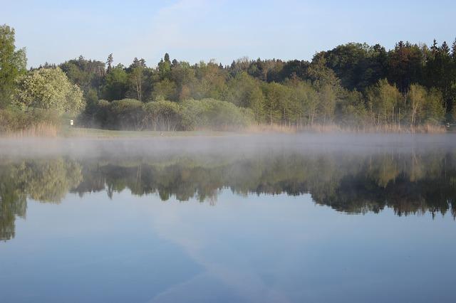 https://pixabay.com/de/photos/see-nebel-wald-wasser-natur-3394011/